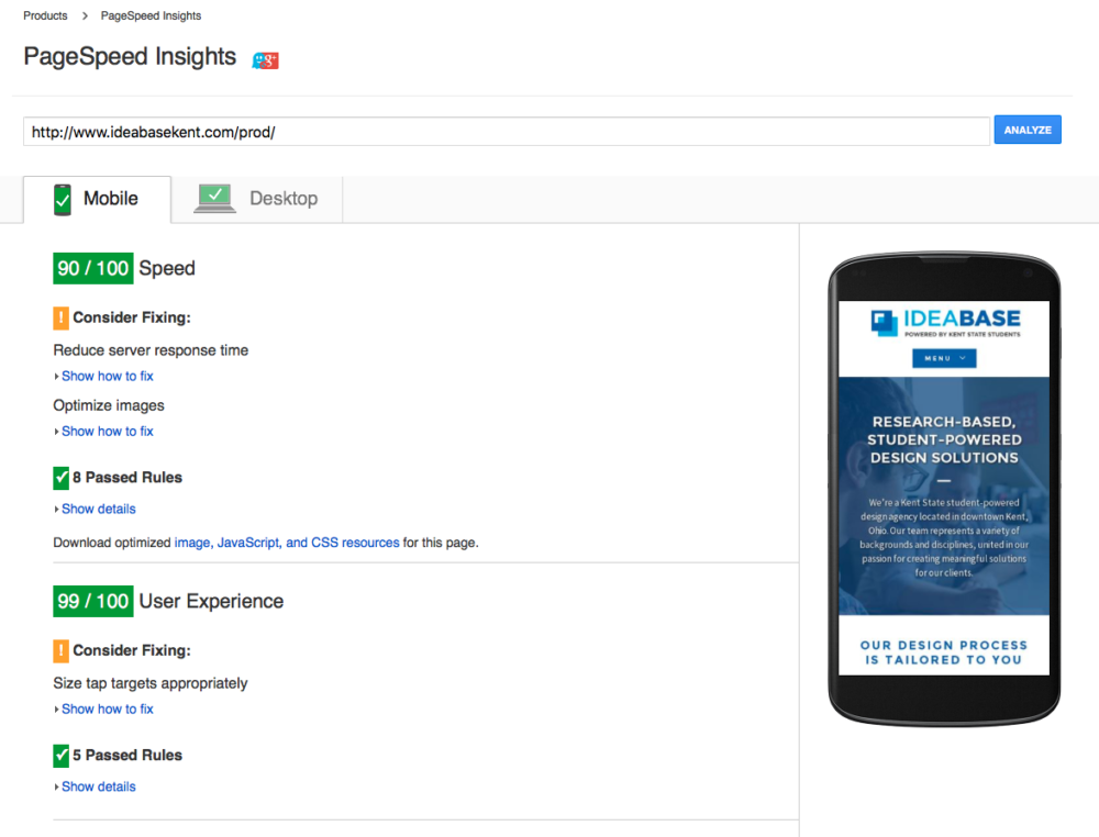 Great Performance Results in Google PageSpeed